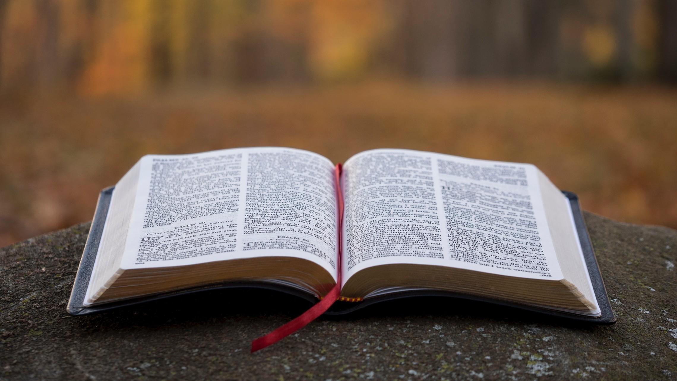 Bible   2